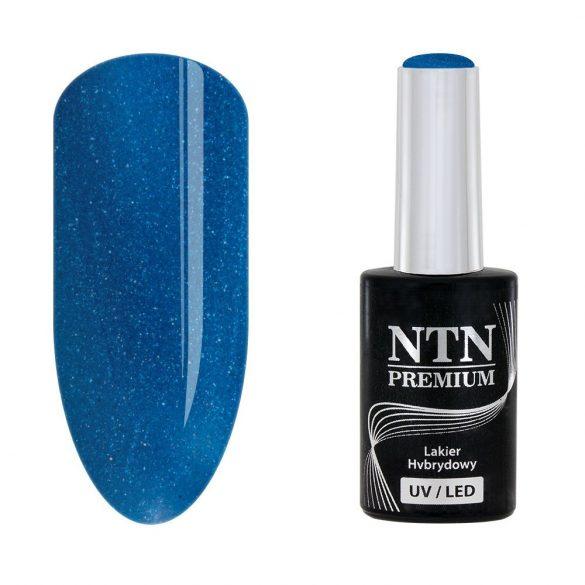 NTN Premium UV/LED 100#