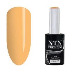 NTN Premium UV/LED 110#