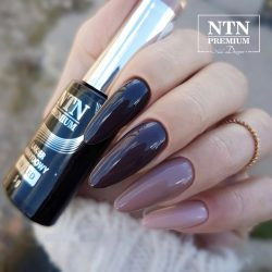 NTN Premium UV/LED 111#