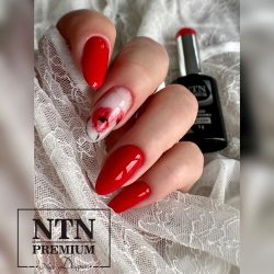 NTN Premium UV/LED 115#
