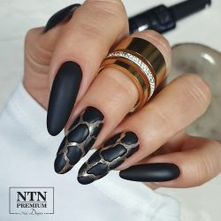 NTN Premium UV/LED 117#