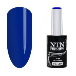 NTN Premium UV/LED 125#