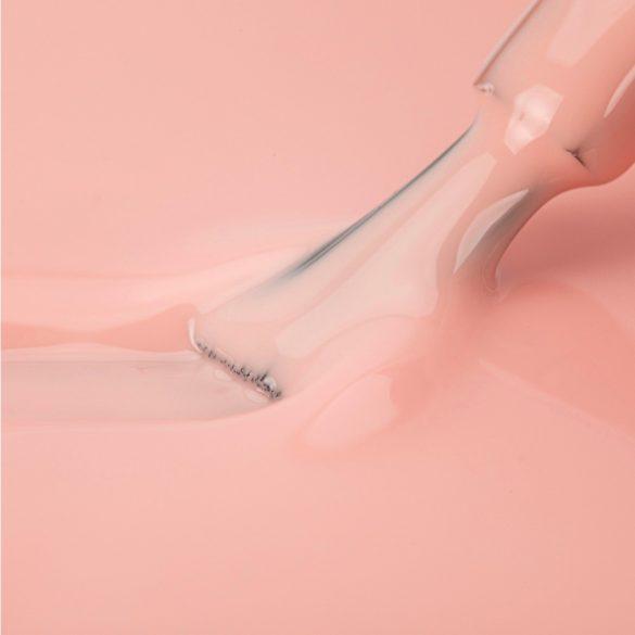 NTN Premium UV/LED 22#