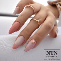 NTN Premium UV/LED 28#