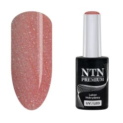 NTN Premium UV/LED 30#