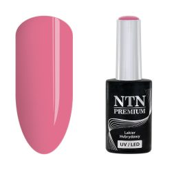 NTN Premium UV/LED 33#