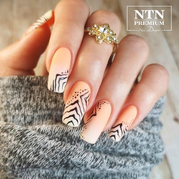 NTN Premium UV/LED 37#