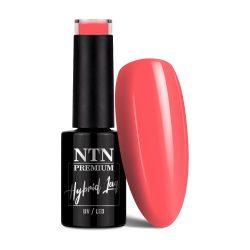 NTN Premium UV/LED 38#