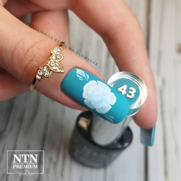 NTN Premium UV/LED 43#