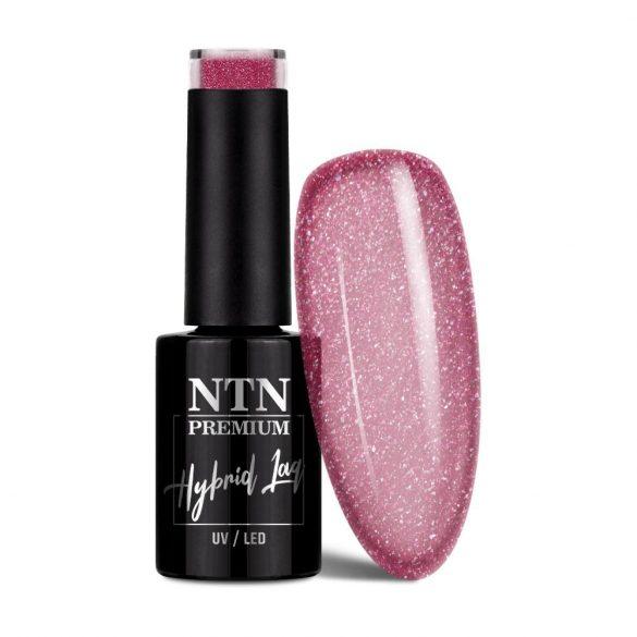 NTN Premium UV/LED 55#