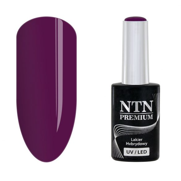 NTN Premium UV/LED 64#
