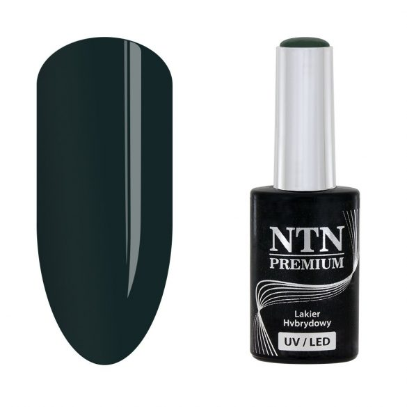 NTN Premium UV/LED 71#