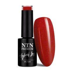 NTN Premium UV/LED 77#
