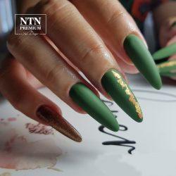 NTN Premium UV/LED 81#