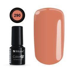 Silcare Color It! Premium 290#