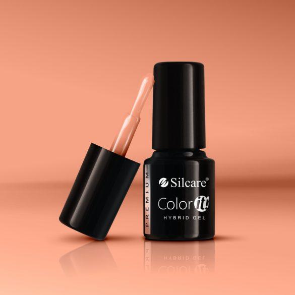 Silcare Color It! Premium 1060#