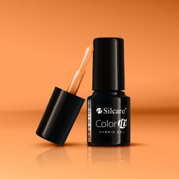 Silcare Color It! Premium 1830#