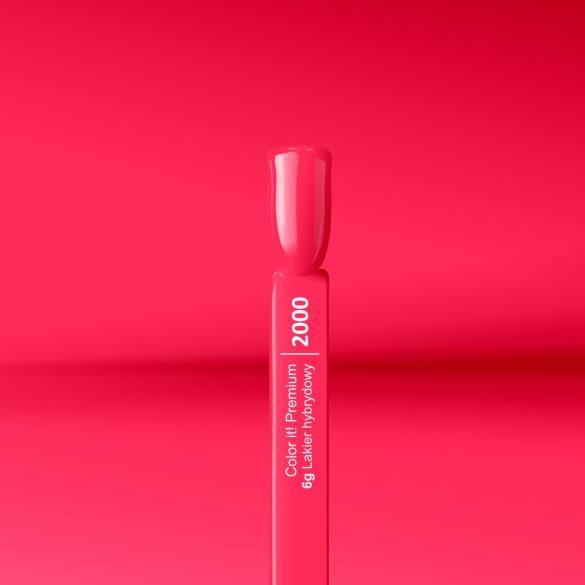 Silcare Color It! Premium 2000#