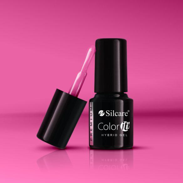 Silcare Color It! Premium 2070#