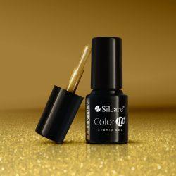 Silcare Color It! Premium 2210#