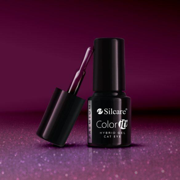 Silcare Color It! Premium Cat Eye 2750#