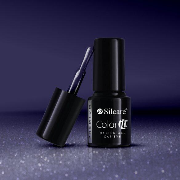 Silcare Color It! Premium Cat Eye 2820#