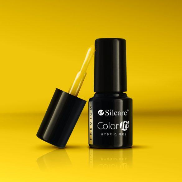 Silcare Color It! Premium 2900#
