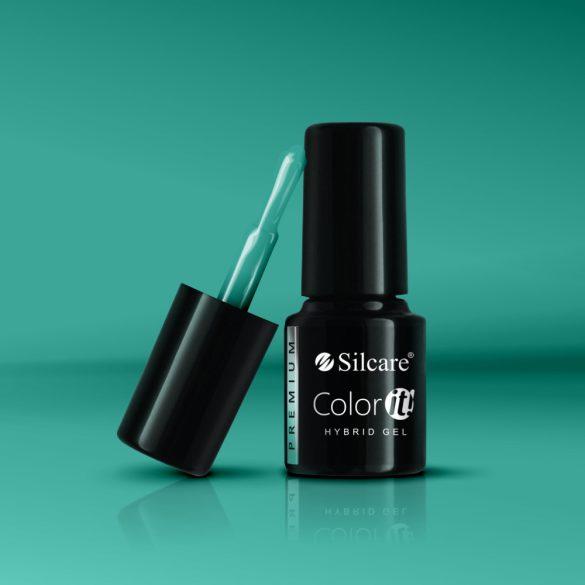 Silcare Color It! Premium 2940#