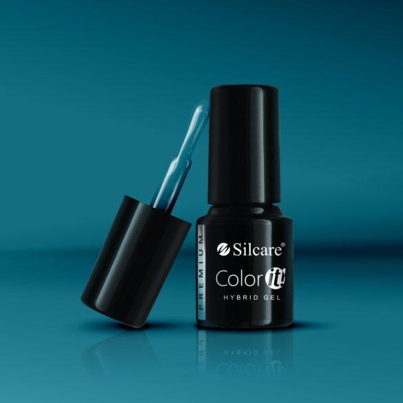 Silcare Color It! Premium 2950#