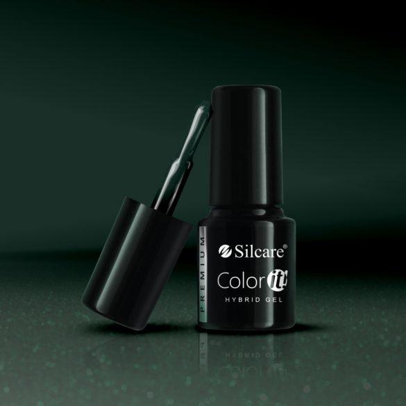 Silcare Color It! Premium 3090#