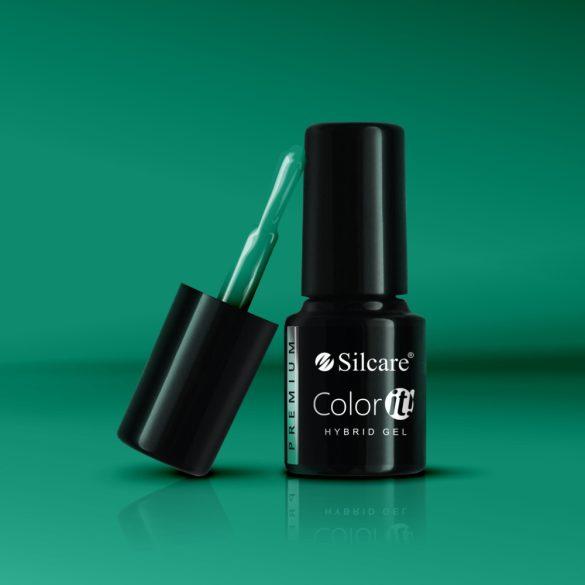 Silcare Color It! Premium 3150#