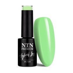 NTN Premium UV/LED 07#