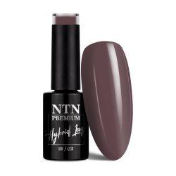 NTN Premium UV/LED 11#