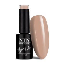 NTN Premium UV/LED 13#