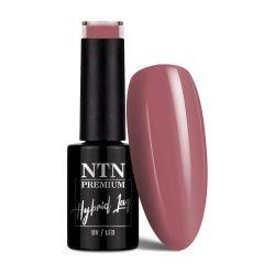 NTN Premium UV/LED 15#