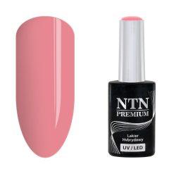 NTN Premium UV/LED 92#