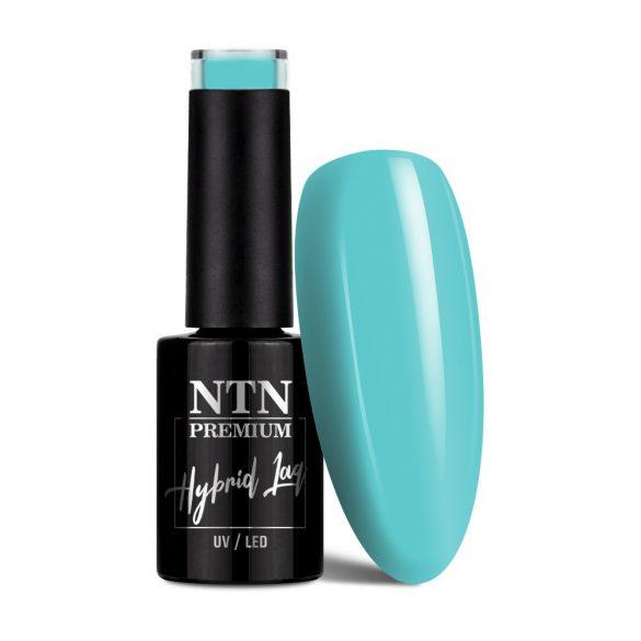 NTN Premium UV/LED 95#