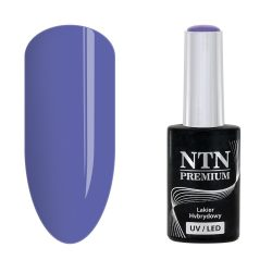 NTN Premium UV/LED 96#