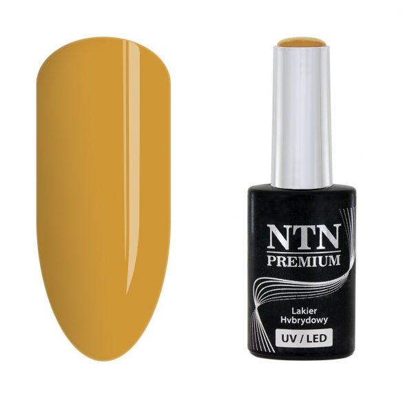 NTN Premium UV/LED 129#