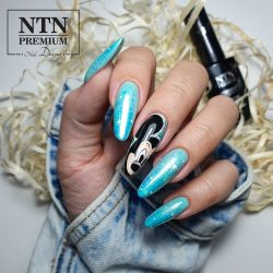 NTN Premium UV/LED 137#