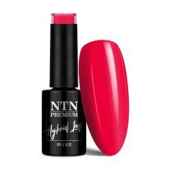 NTN Premium UV/LED 139#