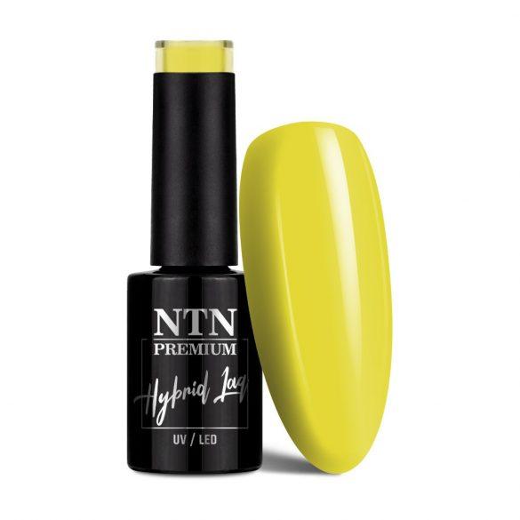 NTN Premium UV/LED 143#
